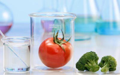 ¿Cúal es el procedimiento de comercialización de nuevos alimentos?
